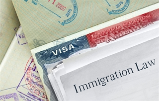 Immigration, VISA